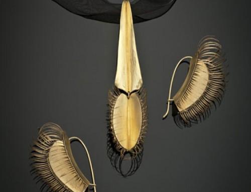 Venus Flytrap Set