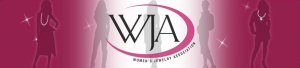 WJA event at Women's Museum